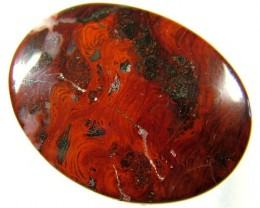 STROMATALYTE FOSSIL 60 CTS TBG-1907