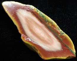 48.90 CTS IMPERIAL JASPER  SLICE FROM MEXICO [F3451]