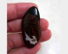 48.46 ct PETRIFIED WOOD Great Colors And Patterning!