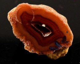 56 cts BEAUTIFUL AGATE GEODE MEXICO  JW-39