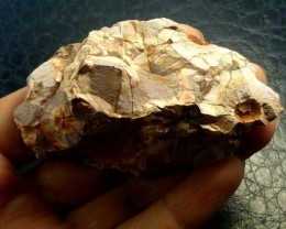 331 CTS BIRDS EYE RHYOLITE ROUGH RT 2447