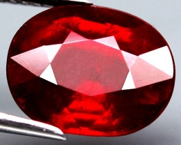 5.79 Carat Fiery Pigeon Blood Ruby - Impressive