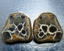 210 CTS PAIR SPLIT POLISHED SERPATIAN NODULES MS 711