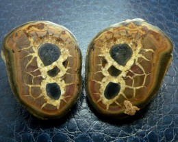 750 CTS PAIR SPLIT POLISHED SERPATIAN NODULES MS 714