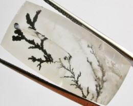 24.75 CTS DENDRITIC AGATE FROM BRAZIL  [ST891]