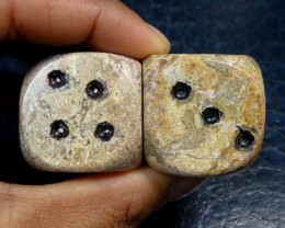 450 CTS PAIR DICE IN MOROCCAN SEA FOSSIL MA 864