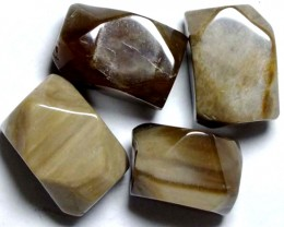 PETRIFIED WOOD BEADS, (4PC) 74.30CTS NP-847