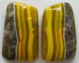 26.25 CTS MUSTARD JASPER PAIR CABOCHONS FROM INDONESIA