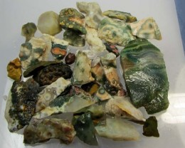 238 GRS OCEAN JASPER ROUGH MS 1039