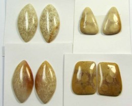 70 CTS PAIRS NATURAL  CORAL FOSSIL STONES MS1042
