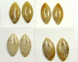 70 CTS PAIRS NATURAL  CORAL FOSSIL STONES MS1043
