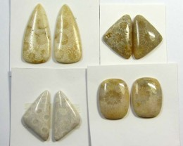 66 CTS PAIRS NATURAL  CORAL FOSSIL STONES MS1047