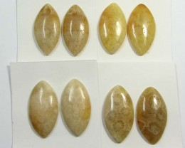75 CTS PAIRS NATURAL  CORAL FOSSIL STONES MS1048