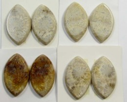 92 CTS PAIRS NATURAL  CORAL FOSSIL STONES MS1049