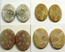 121 CTS PAIRS NATURAL  CORAL FOSSIL STONES MS1050
