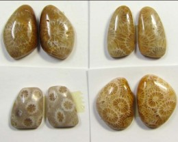 28 CTS PAIRS NATURAL  CORAL FOSSIL STONES MS1052