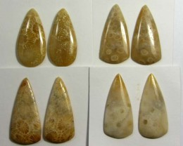 74 CTS PAIRS NATURAL  CORAL FOSSIL STONES MS1056