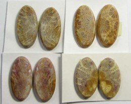 67 CTS PAIRS NATURAL  CORAL FOSSIL STONES MS 1057
