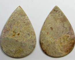 91 CTS PAIRS NATURAL  CORAL FOSSIL STONES MS1072