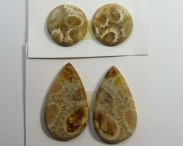 14 CTS PAIRS NATURAL  CORAL FOSSIL STONES MS 1073