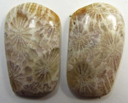 4 g ONE PAIR NATURAL  CORAL FOSSIL STONES MS1085