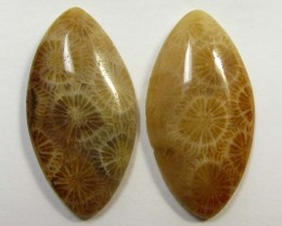3.4 g ONE PAIR NATURAL  CORAL FOSSIL STONES MS1098