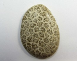 29.25 CTS ONE NATURAL  CORAL FOSSIL STONE MS1107