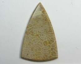 39.55 CTS ONE NATURAL  CORAL FOSSIL STONE MS1110