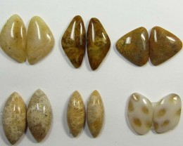 33 CTS SIX PAIRS NATURAL CORAL FOSSIL STONES MS1117