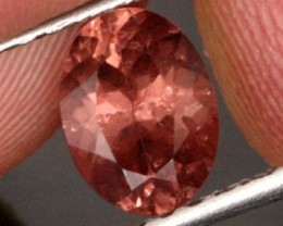 1.44 CTS CERTIFIED CHAMPAGNE COLOUR MALAIA GARNET [GNM19]