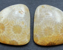 22.25 CTS CORAL PAIR NATURAL STONE PERFECT FOR EARRINGS