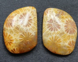 9.55 CTS CORAL PAIR NATURAL STONE PERFECT FOR EARRINGS