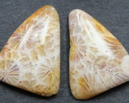 8.95 CTS CORAL PAIR NATURAL STONE PERFECT FOR EARRINGS