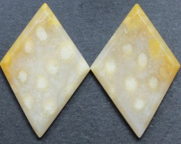 20.55 CTS CORAL PAIR NATURAL STONE PERFECT FOR EARRINGS