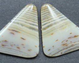13.70 CTS WYOMING AGATE PAIR PERFECT FOR EARRINGS