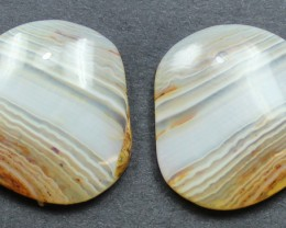 21.40 CTS WYOMING AGATE PAIR PERFECT FOR EARRINGS
