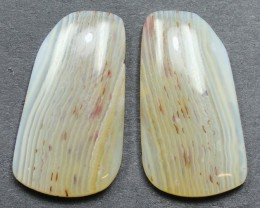 27.70 CTS WYOMING AGATE PAIR PERFECT FOR EARRINGS