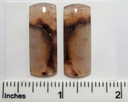 29.8 CTS PARCEL PAIR  AGATE  SUMATRA  MS1342