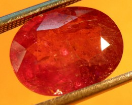 CERT 6.11 CTS FACETED CUT RED RUBY  11 972