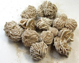1070 CTS PARCEL  DESERT ROSE SPECIMENS  MS 1515