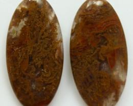 13.90 CTS MT MAURY AGATE PAIR OF STONES