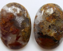 16.55  CTS MT MAURY AGATE PAIR OF STONES