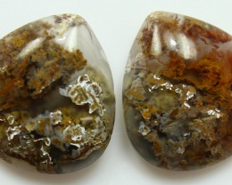 22.40 CTS MT MAURY AGATE PAIR OF STONES