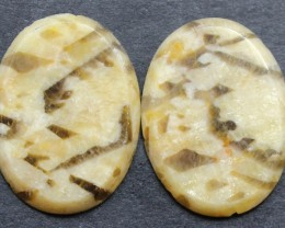 10.50 CTS FOSSIL PALM WOOD PAIR OF STONES