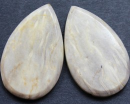 28.00 CTS FOSSIL PALM WOOD PAIR OF STONES