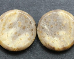 15.85 CTS FOSSIL PALM WOOD PAIR OF STONES