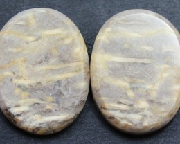 28.85 CTS FOSSIL PALM WOOD PAIR OF STONES