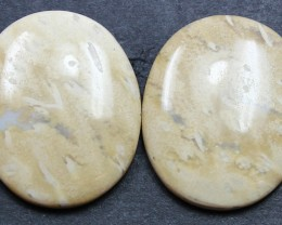 22.65 CTS FOSSIL PALM WOOD PAIR OF STONES