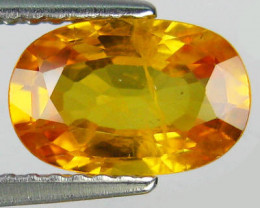 1.85 CTS ALLURING EXTREME FIRE HOT RICH YELLOW SAPPHIRE!!