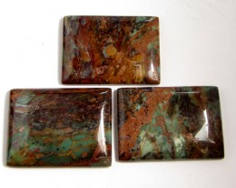 253 CTS THREE SEA JASPER GEMSTONES MS 1655